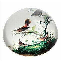 Audubon - Winter Wrens Paperweight