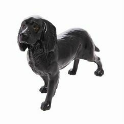 Connoisseur Cocker Spaniel Black Dog