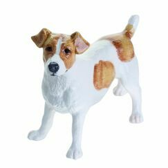 Jack Russell (Brown & White)